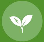 Spécialiste en énergies renouvelables
